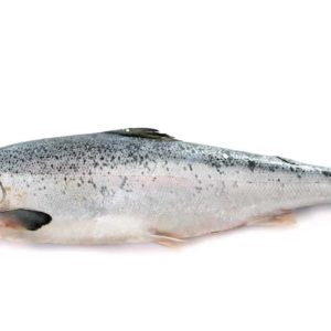 Lachs ganz Norwegen 4-5 kg