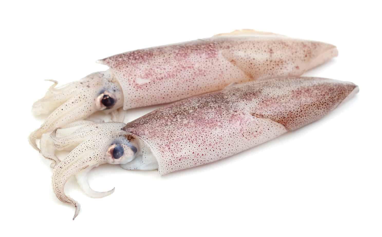 Calamari California