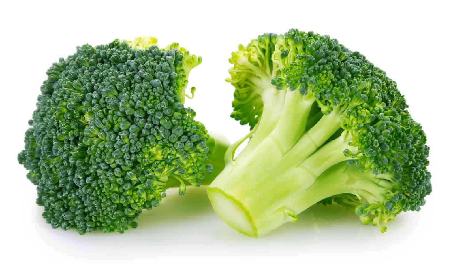 Broccoliröschen 40-60 mm
